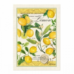 Michel Design Works Kitchen Tea Towel Lemon Basil Cotton Dish Towel New